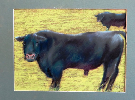 2014 Judy's Bull 2