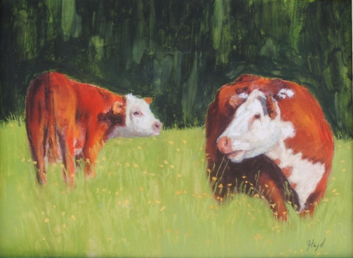 High Country Cows 9x12