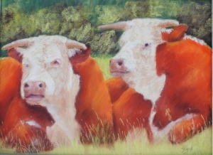 Potter Hereford Bulls 9x12