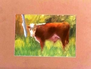 Potter Cow 2014 a 5x7
