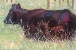 Heath Ranch Cow and Calf 1 11X14 $300.00