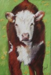 Ouray County Calves #1 5x7 $135