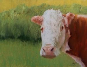 Potter Cow 2015 9x12 $ 250