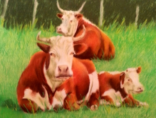 Potter Cows 2015 12x16 $350