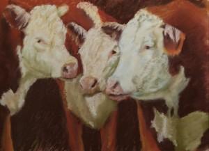 Cattle drive 2015 9x121