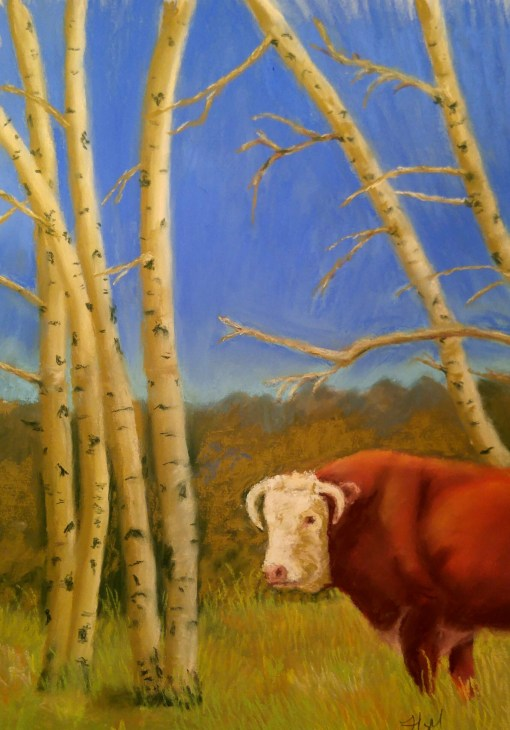 Bull in the Aspens 12x16