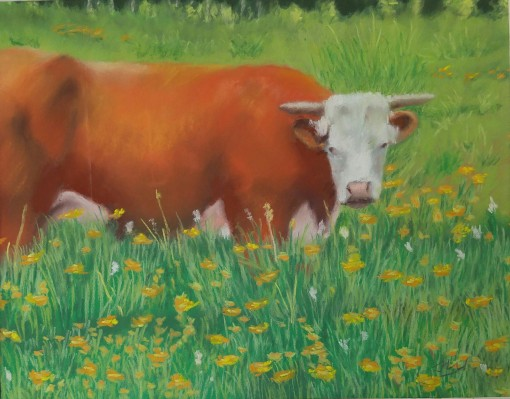 11x14browncow1