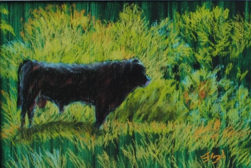 Black Bull in Light 9x12