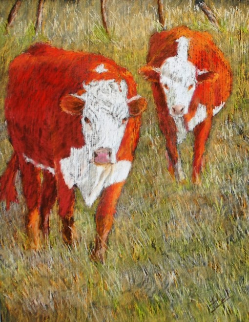 Heath Ranch Cows 2017 12x16