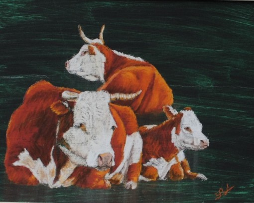 Potter Bulls in Dark 12x16